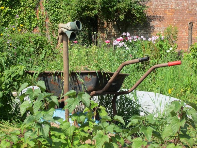 in-the-walled-garden