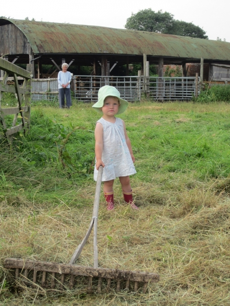 naomi-helping-with-hay-making
