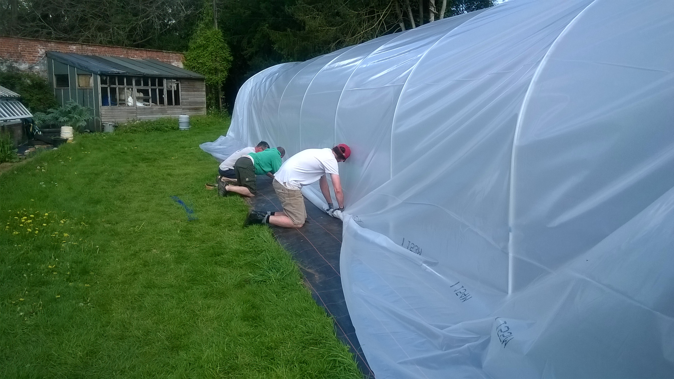 new polytunnel 10